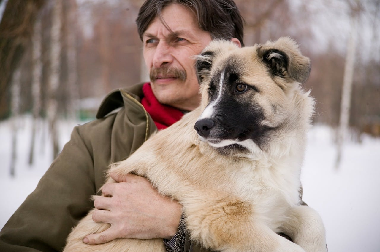 dog and man, dog, puppy